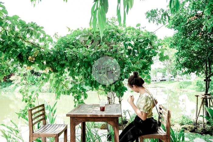 ธรรมชาติโอชา ร้านกาแฟ ร้านอาหารริมน้ำ บ่อบัว สะพานถ่ายรูป เค้กอร่อย ถ.กาญจนาภิเษก